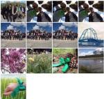 Concurso foto2